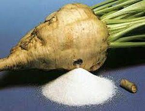 Производство сахара в Украине увеличится на 33%