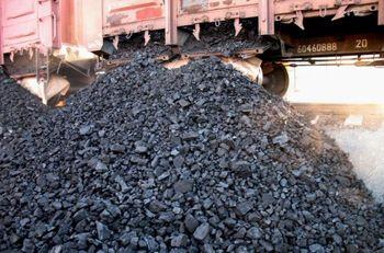 На Николаевщине девушка за три часа часа перенесла полтонны ворованного угля