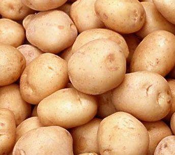В Украине стремительно дешевеет картофель