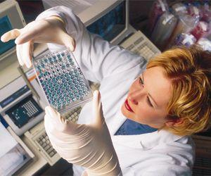 Днепропетровские вирусологи первыми выделили новый штамм вируса гриппа типа В
