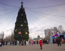 Елка в парке Глобы обойдется городу в 30 тыс. грн