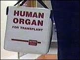 Украинский хирург таки занимался черной трансплантацией