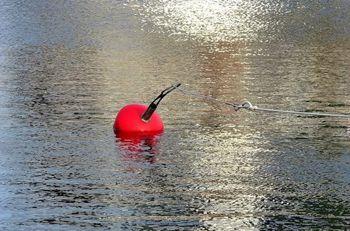 В Запорожье МЧС спасало буйки, приняв их за рыбаков