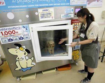 Изобрели стиральную машину для домашних животных