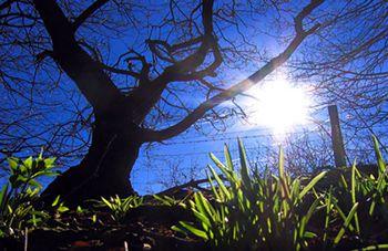 Весна придет на следующей неделе