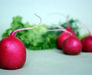 В Днепропетровске начали появляться свои овощи