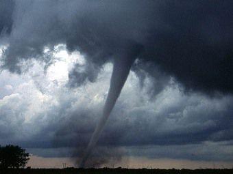 Жертвами торнадо в США стали 26 человек