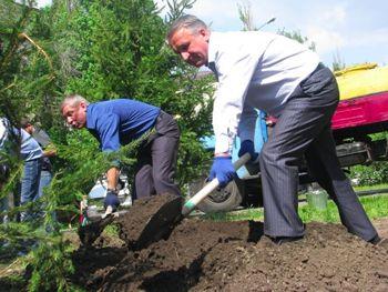 Днепропетровские депутаты посадили 50 ёлок на проспекте Гагарина
