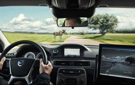 Новый Volvo XC90 получит защиту от лосей