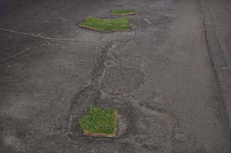 Днепропетровские дороги залатали травой (Фото)