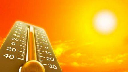 2016 год может стать самым жарким в истории