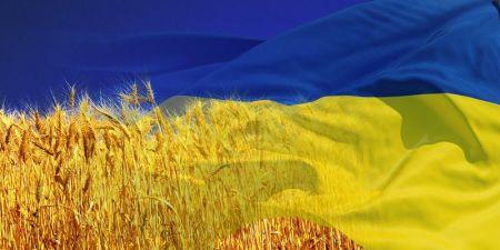 Программа мероприятий ко Дню независимости Украины на Днепропетровщине