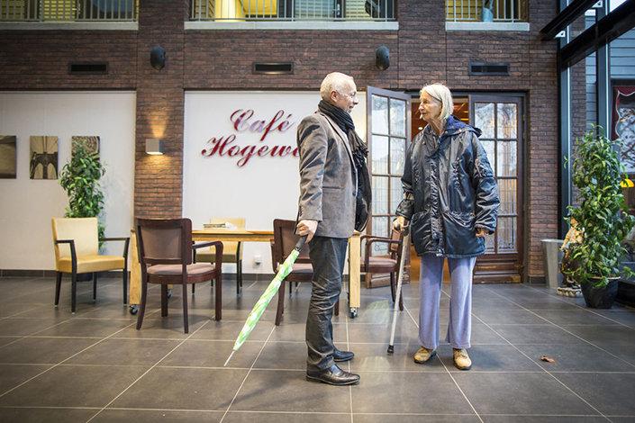 Обычная голландская деревня, где за каждым жителем установлена слежка здоровые, здравоохранение, пожилые, психиатрия