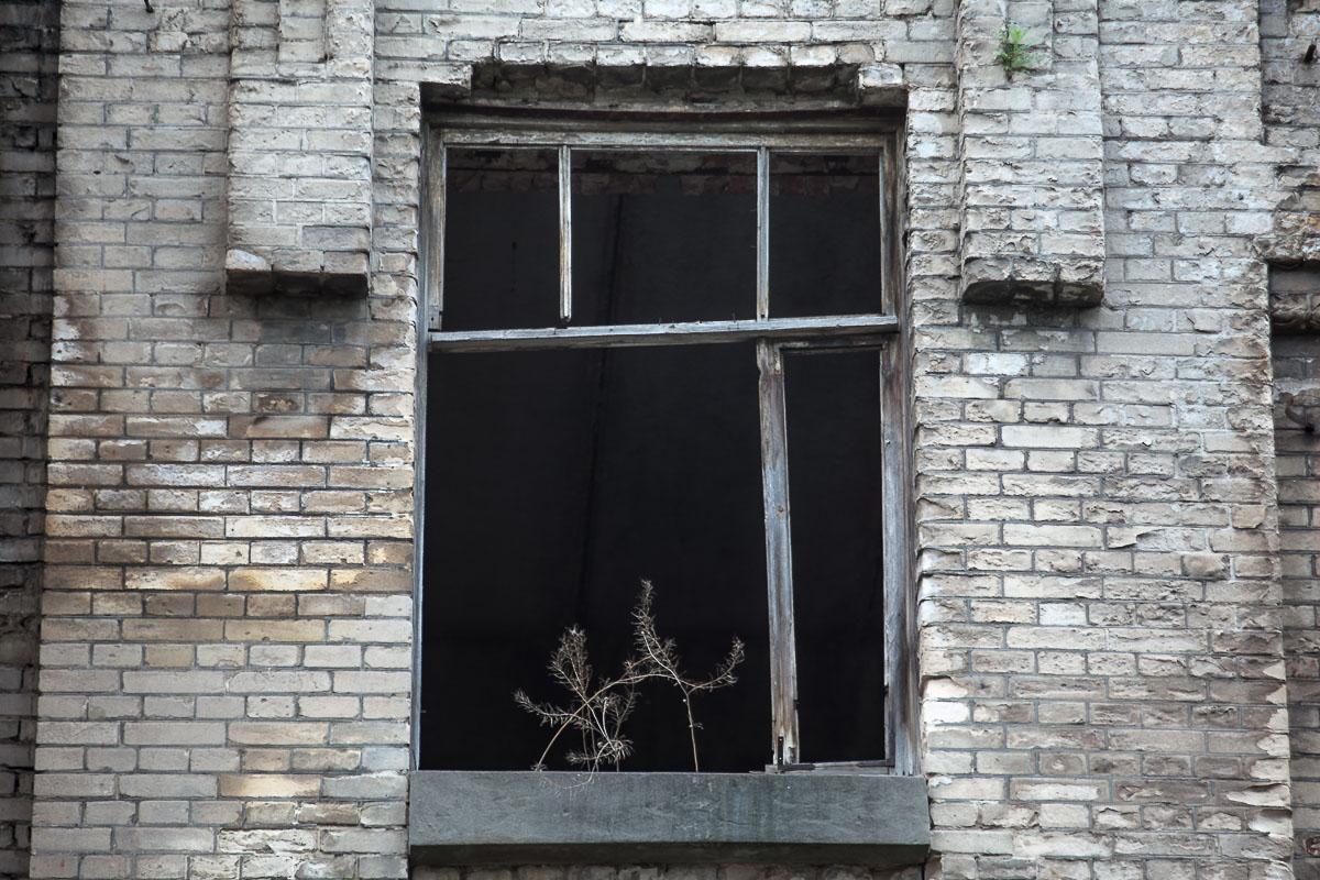 Уже давно никто не выглядывал из этих окон